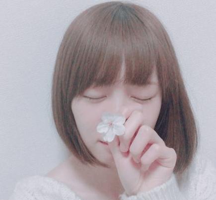 花とねこてん
